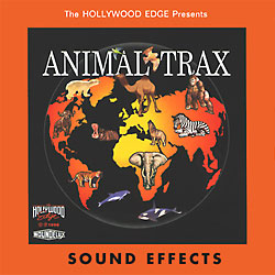 All Sound Effect Libraries | Hollywood Edge
