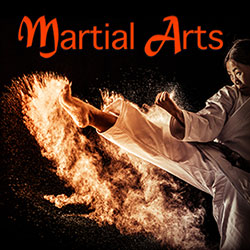 Martial Arts & Human Impact Sound Effects